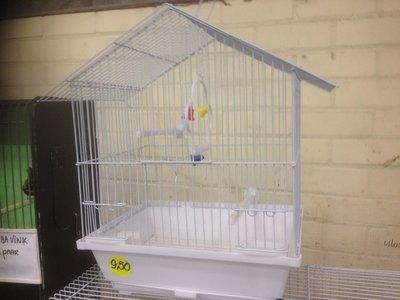 Nieuwe goedkope, complete Vogelkooitjes kopen?